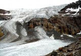I ghiacciai italiani protetti da uno 'scudo' di sassi