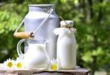 Un bicchiere di latte…preistorico!