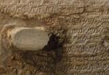 Il clima cancellò leoni e giraffe dall'antico Egitto