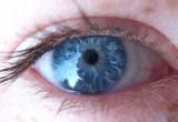 Fda approva lente a contatto misura pressione dell'occhio