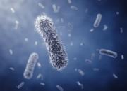 Multiresistenze batteriche, è emergenza