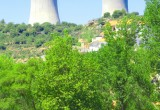 Il nucleare per la biodiversità