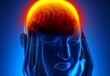 Traumi cerebrali danneggiano la memoria