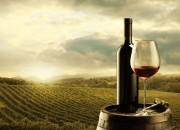 Un bicchiere di vino al giorno? Non a tutti fa bene