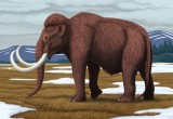 Per i Mammut fu estinzione annunciata
