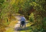 Paralisi: nuove protesi biocompatibili