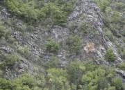 I pori delle rocce sono la culla della vita?