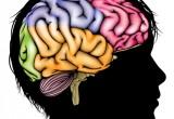 I neuroni che prevedono il comportameto altrui