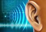 Scarso udito nella mezza età e perdita di volume cerebrale
