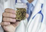 Dolore: in Israele il primo inalatore di cannabis medica