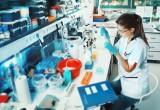 Creati tumori in laboratorio: comincia l'era delle cure su misura