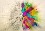 Siete creativi? Il vostro cervello è più connesso