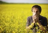 6 milioni di italiani colpiti da allergie