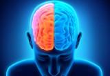 "Neurologia: ""sindrome da demenza pugilistica'"" o Alzheimer?"
