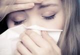Allergia alla polvere: in arrivo un nuovo rimedio