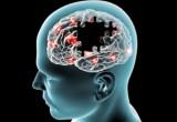 Parkinson: sempre più casi negli ultimi 30 anni. Soprattutto fra gli uomini