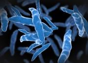 Attenzione al gene mcr-1, rende i batteri 'invincibili'