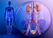 Insufficienza renale: pericolo stagione influenzale