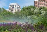 Pollini in città: dagli esperti un decalogo per ridurre l'impatto sugli allergici
