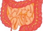 Malattie infiammatorie intestinali: chi ne soffre è a rischio influenza