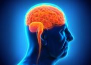 Epilessia: incidenza stabile negli ultimi 40 anni, ma più casi fra gli over 65
