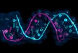 Sclerosi Multipla: particelle di microRNA ne svelano l'andamento