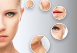 Scoperto l'enzima che ferma l'invecchiamento della pelle