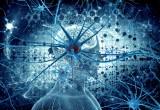 Robot: una nuova interfaccia uomo-pc consente di comunicare con la mente