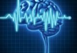 Diagnostica: nuovo dispositivo traduce attività cerebrale in suono