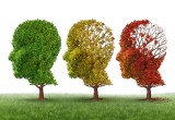 """Alzheimer: studio americano mette in dubbio efficacia """"ginnastica mentale"""""""