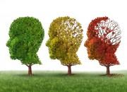 Anche lo smog associato a rischio di Alzheimer