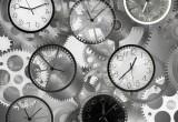 Orologio biologico: anche l'evoluzione del cervello ne è influenzata