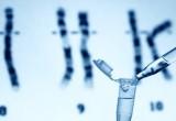 Tumore del seno: test genetici per recidive utili nella malattia in fase precoce