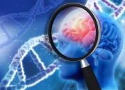 Neuroscienze: non è Alzheimer, è Late