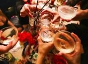 Cervello: alcool in eccesso ne riduce lo sviluppo