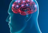 """Controllare le malattie """"pilotando"""" i messaggi dei nervi al cervello"""