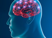 Via libera a esperimento per risvegliare da morte cerebrale