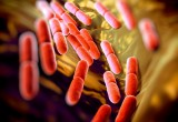Ideato dispositivo per diagnosi in 2 ore delle infezioni batteriche