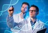 Genetica: da un gene di una popolazione greca la chiave per proteggere il cuore