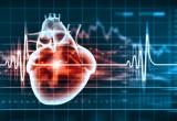 Morte cardiaca improvvisa: dai cardiologi USA nuove linee guida
