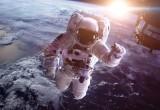 Rosmarino, melograno e semi di vite: un aiuto agli astronauti