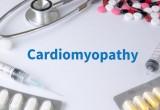 Cardiomiopatie. In Europa una su tre ha origine genetica, ma manca screening
