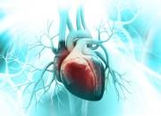 Prevenzione dell'ictus cruciale nella Tavr per la stenosi aortica bicuspide