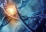 Lo smartphone diventa un laboratorio genetico