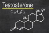 Sclerosi multipla: uomini più protetti grazie al testosterone
