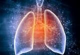 Polmoni: l'uso frequente di prodotti per la pulizia ne mette a rischio la funzionalità