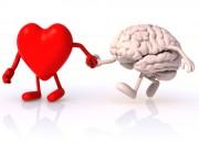 Cuore e cervello, stessi fattori di rischio