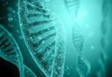 Sarcoma: medicina di precisione e genomica insieme per combatterlo. Al via progetto made in Italy
