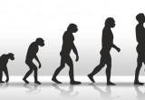 C'è un errore nell'albero genealogico dell'Homo Sapiens