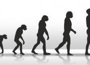 Evoluzione: da studio italiano sistema di datazione più preciso del carbonio-14